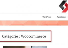 """Comment retirer le mot """"catégorie"""", """"auteur"""", """"tag"""" dans les pages archives de Wordpress"""