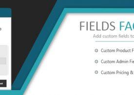 Comment rajouter des champs personnalisés à vos produits Woocommerce